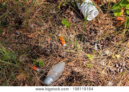 Hazardous Waste - Light Bulbs And Batteries Thrown In The Woods