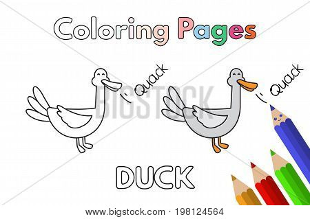 Cartoon duck illustration. Vector coloring book pages for children