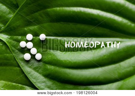 Closeup image of homeopathic medicine consisting of the pills