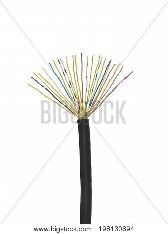 Black stripped cable with multicolored electrical wires isolated on white background.