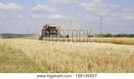 Harvester Collects Wheat