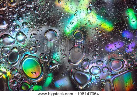 Abstract Water Drops on Colorful Background. Oil Bubbles on Water Surface with Holographic Effect. Design of Creative Watery Texture.
