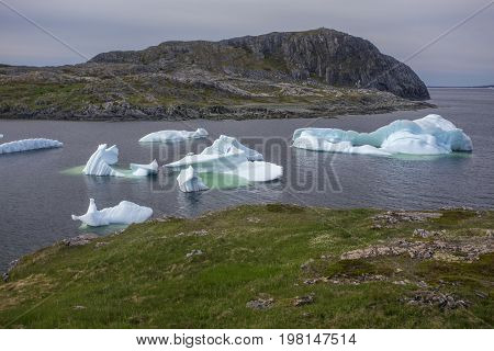 icebergs in quiet bay below Brimstone Head on Fogo Island, Newfoundland, Canada