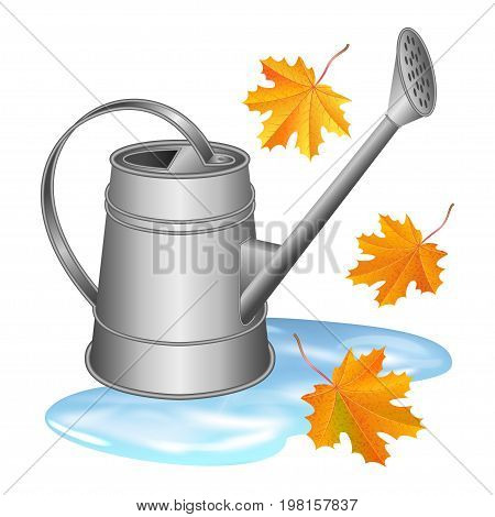 Gray watering can in puddle and falling orange maple leaves. Autumn gardening season illustration. Rainy day. Realistic vector