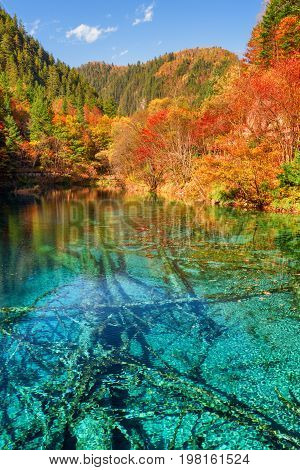 Scenic View Of The Five Flower Lake (multicolored Lake)