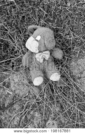 Abandoned Dog Doll On The Pavement. Black-white Tone