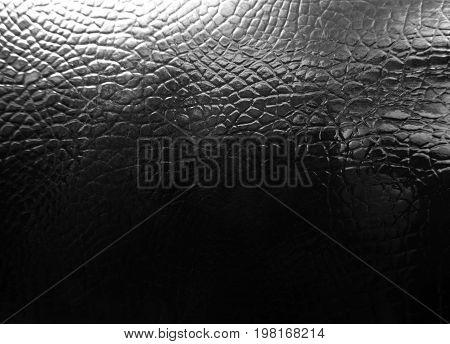 Crocodile leather texture background. Black crocodile skin. Stock image.