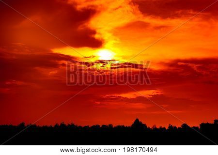 Red Sky And Sunbeam Through Cloud Above Silhouette Of Trees. Sunset In The Evening