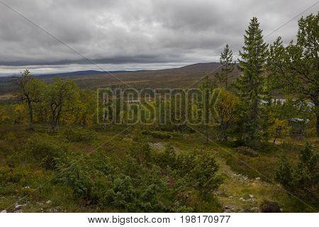 The lake Grövelsjön is hidden behind the trees
