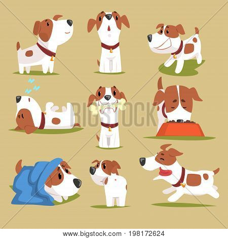 Funny puppy daily routine set, cute little dog in his evereday activity colorful character vector Illustrations