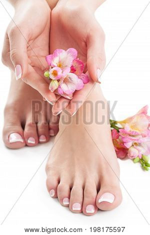 Female flowers hands legs white background isolated