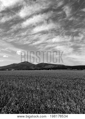 Vast skies with patterned clouds over an agricultural field with mountains in the background in rural Central Oregon near Culver.