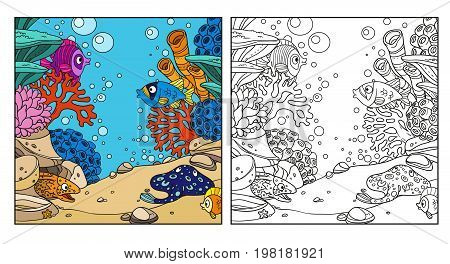 Underwater World With Corals, Anemones, Moray Eels And Ramp Coloring Page On White Background