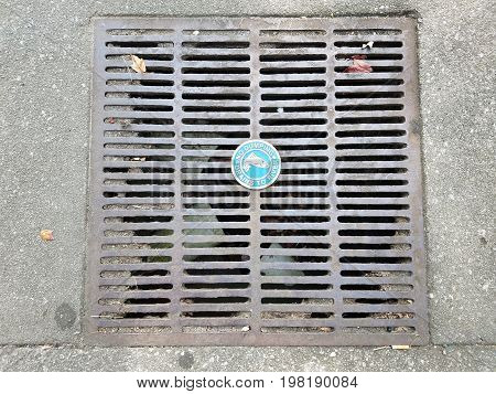 metal grate drain with no dumping drains to river sign