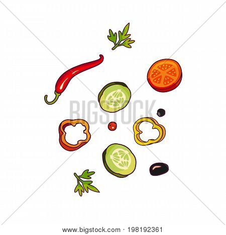 Vector flying ingredients flat isolated illustration on a white background. Vegetables for pizza, sandwich, roll shawarma fastfood preparation. Chilli, tomato pepper olive cucumber cartoon objects