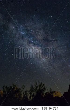 Milky Way southeastern California sky with boulders and brush at bottom