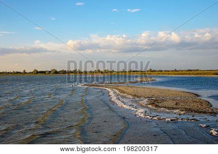 Summer foreland landscape. Kinburn Spit at the Black Sea in Ukraine. Regional Landscape Park of Kinburn Foreland.