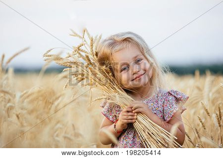 Cute little girl in the summer field of wheat. A child with a bouquet of wheat in his hands