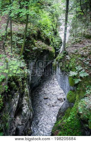 Small river in canyon at forest in SLovak paradise