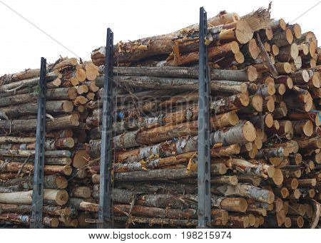 timber wood stack forestry industry forest product woodpile