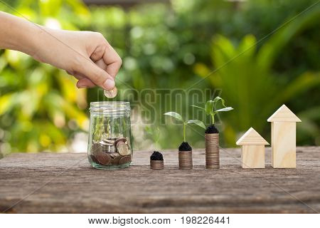 Money and plant with hand's women putting golden coins in money jar Saving money concept concept of financial savings to buy a housetrees growing in a sequence of germination on piles of coins Growth business money.