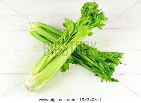 Fresh green celery isolated on white background