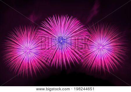 Beautiful firework display at night. firework display