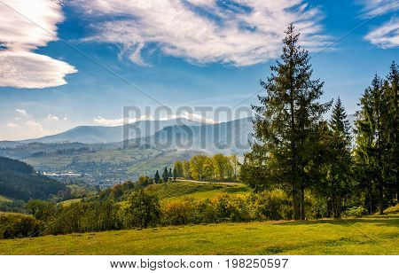 exquisite autumn countryside in mountains. forest and meadow by the road with beautiful view in to the valley