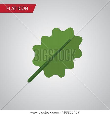 Alder Vector Element Can Be Used For Oak, Alder, Leaf Design Concept.  Isolated Aspen Flat Icon.