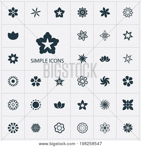 Elements Stephanotis, Aster, Floret And Other Synonyms Daffodils, Cypress And Gerberas.  Vector Illustration Set Of Simple  Icons.