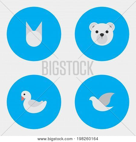 Elements Pigeon, Cat , Panda Synonyms Cat, Dove And Bird.  Vector Illustration Set Of Simple Fauna Icons.