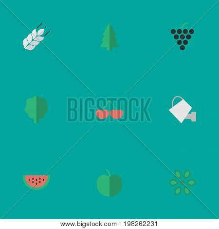 Elements Fruit, Bailer, Corn And Other Synonyms Watering, Cherry And Wheat.  Vector Illustration Set Of Simple Horticulture Icons.