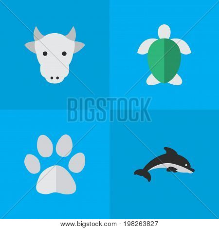 Elements Foot, Fish, Turtle And Other Synonyms Turtle, Milk And Tortoise.  Vector Illustration Set Of Simple Animals Icons.
