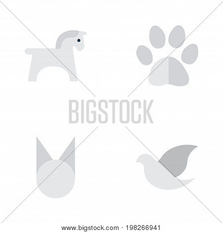 Elements Steed, Foot, Cat And Other Synonyms Cat, Foot And Pigeon.  Vector Illustration Set Of Simple Wild Icons.