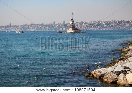Seagulls And Maidens Tower In Istanbul