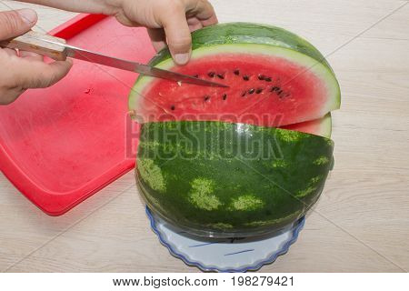 Hands close up of young woman with watermelon cutting watermelon fruit summer food concept. woman cutting watermelon into pieces