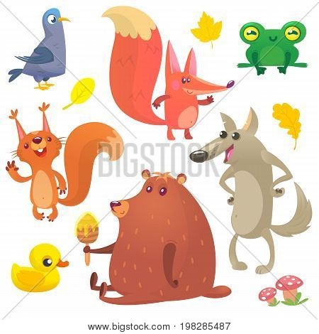 Cartoon forest animals set. Vector set of animal icons isolated on white. Vector illustration of pigeon fox frog squirrel duck bear and wolf