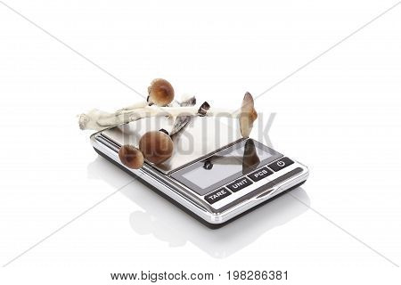 Magic mushrooms on digital scale isolated on white background. Psychedelic medicine. Natural remedy.