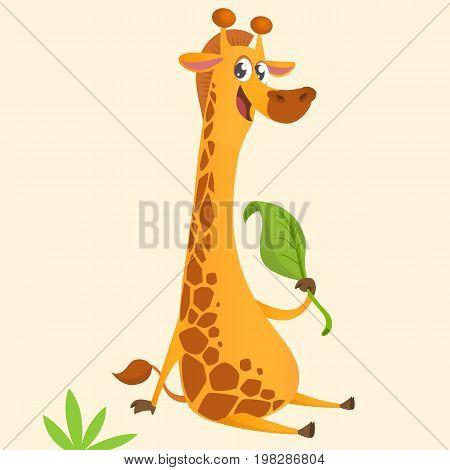 Cartoon giraffe mascot. Vector illustration of african savanna giraffe eating a leaf and smiling. Great for sticker print or design