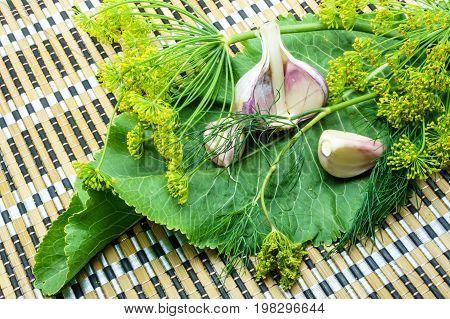 Garlic, Dill And Horseradish On A Napkin