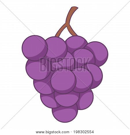Red grapes icon. Cartoon illustration of red grapes vector icon for web design