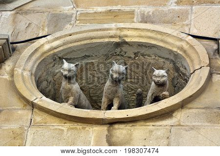 Baku, Azerbaijan - July 23, 2017. Sculpture of three cats looking out of window in Old Town quarter of Baku.