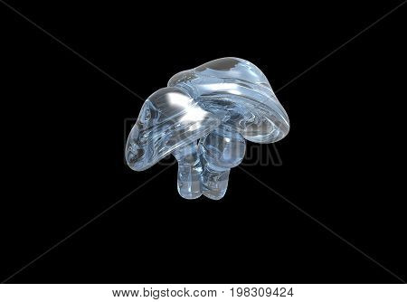 Rendered image of 3D translucent (glass/water) mushrooms isolated on a black background done in a slightly psychedelic manner