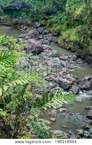 A river flows down a valley on the road to Hana on Maui Hawaii.