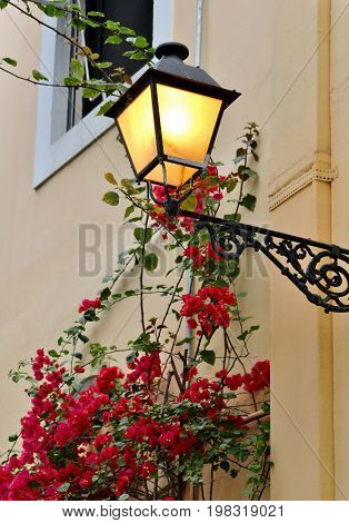 Lamp post attached to building with Bouganvilla flowers growing around it