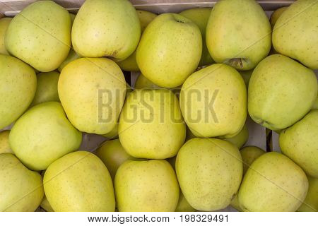 Farmers Market Apples Background 3