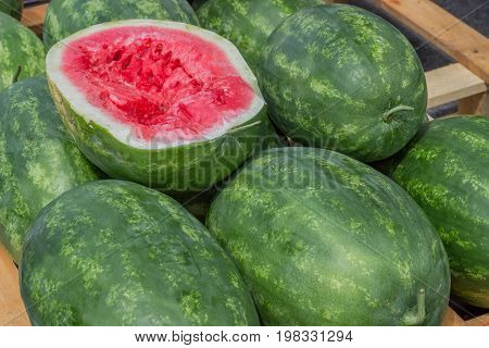Farmers Market Watermelons On A Wooden Pallet