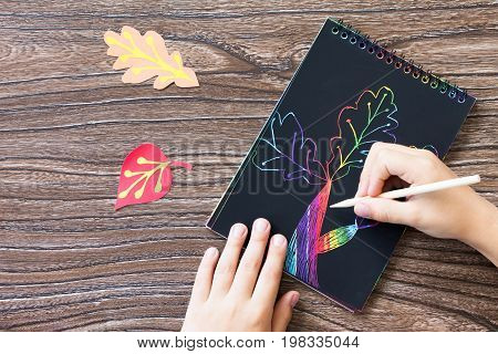Autumn Background. Children's Creativity, Drawing Creation Process. Colored Different Autumn Leaves.