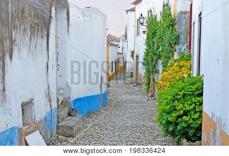 The Greenery In Medieval Obidos