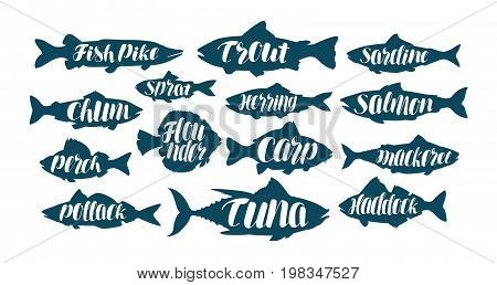Fish, collection labels or logos. Seafood, food, fishing angling set icons